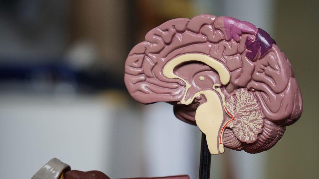 enfermedades neurológicas tu farmacéutico de guardia